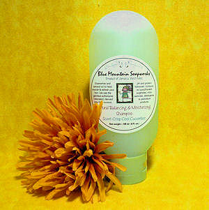 Hair Balancing and Moisturizing Shampoo - SMALL